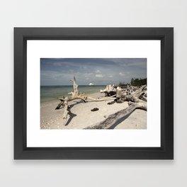 cape Romano Framed Art Print