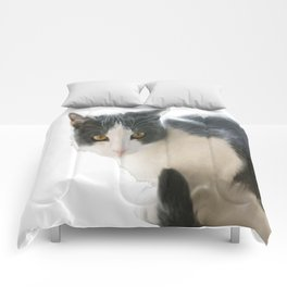 A Max And Mantle Bi Colour Cat Isolated Comforters