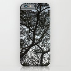 Under the trees II Slim Case iPhone 6s