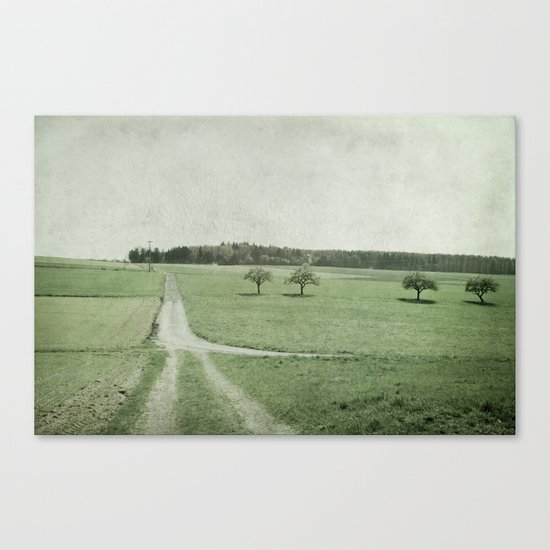 pathways, fields and trees Canvas Print