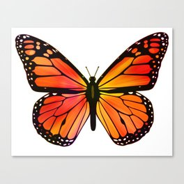 Monarch Butterfly  - Streaked Canvas Print