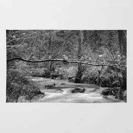 watercourse in december black and white Rug