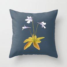 Butterwort - Pinguicula macroceras Throw Pillow