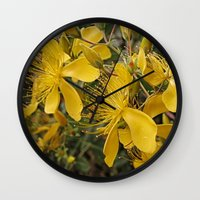 marc johns Wall Clocks featuring Beautiful St Johns Wort by Wendy Townrow