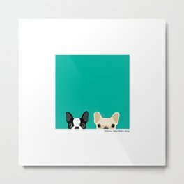 Boston Terrier & French Bulldog 2 Metal Print