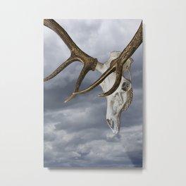 Elk Skull against the Sky Metal Print