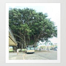 hilo hawai'i Art Print