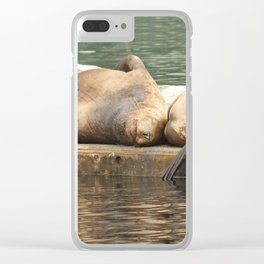 Sleeping Sea Lions Photography Print Clear iPhone Case