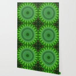 Detailed mandala in green color Wallpaper