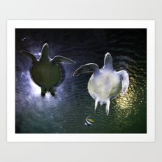 Sea Turtle Love Art Print