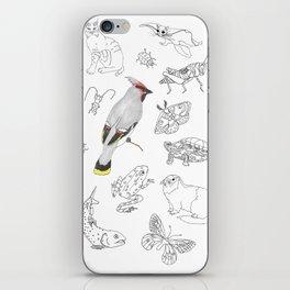Animals of North America  iPhone Skin