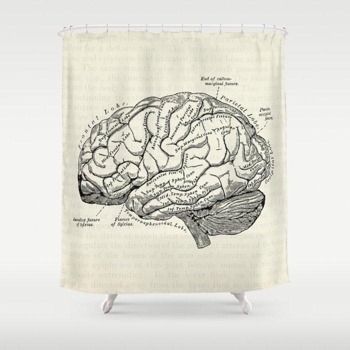 Vintage Medical Illustration Of The Human Brain Shower Curtain