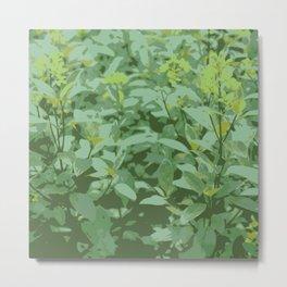 Yellow Flower Grass Metal Print