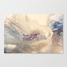 Flower 1 MacroPhotography Canvas Print