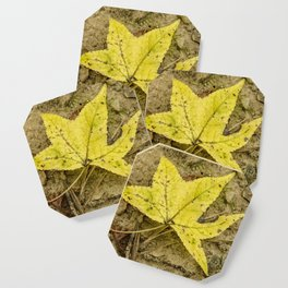 The Yellow Leaf Coaster