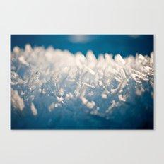 Mountain Snow Macro Canvas Print