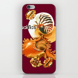 Pacifica 1 - South Pacific Seashells iPhone Skin