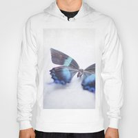butterfly Hoodies featuring Butterfly by Pure Nature Photos