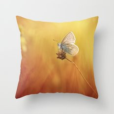 Catching a little sunshine... Throw Pillow