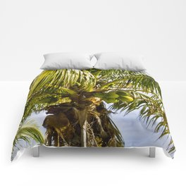 Palm Trees Comforters