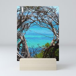 Simons Window Mini Art Print