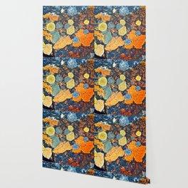 Lichen Art Wallpaper