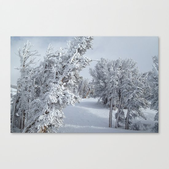 Snow Canvas Print