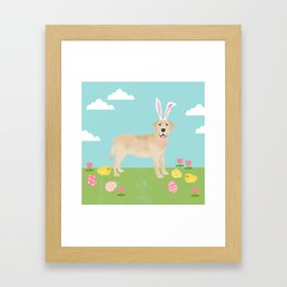 Yellow labrador retriever dog breed easter bunny spring pet portrait Framed Art Print