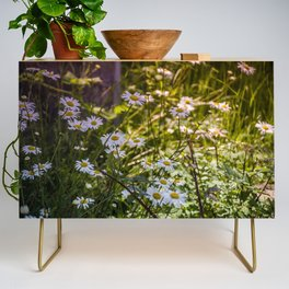 Continuous Matters Credenza