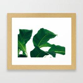 Green Leafs (Color) Framed Art Print