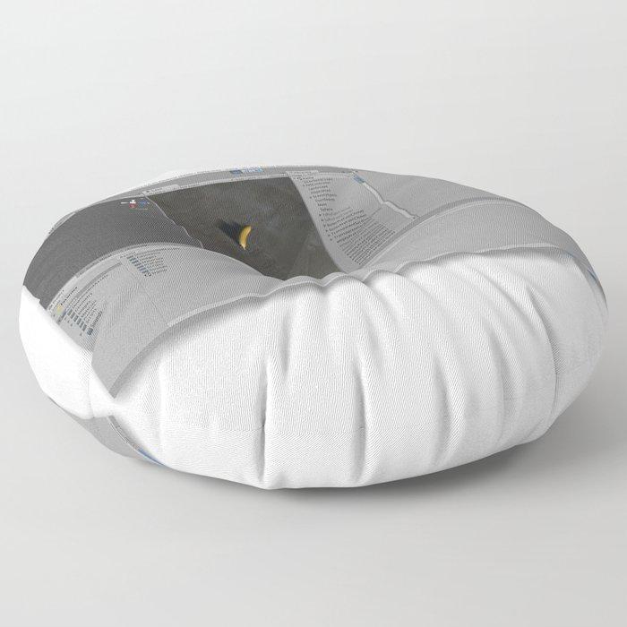 S170510UT Floor Pillow