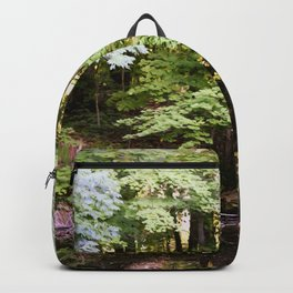 Sunday Afternoon Backpack
