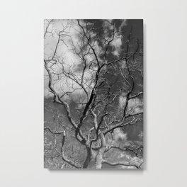 Tree Black and White Metal Print