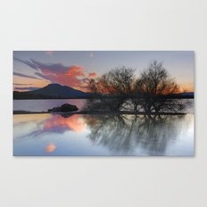 Trees in the water at the red sunset Canvas Print