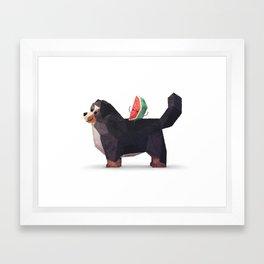 Watermelon on Bernese Mountain Dog Framed Art Print