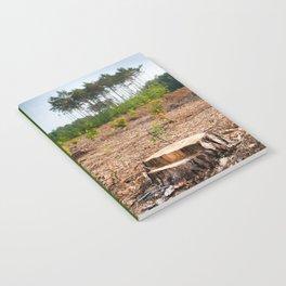 Woods logging one stump after deforestation Notebook