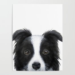 border collie Original painting print by miart Poster
