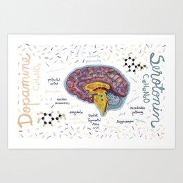 Dopamine and Serotonine in Brain #infographics #chemistry Art Print