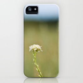 Flower in the Field iPhone Case
