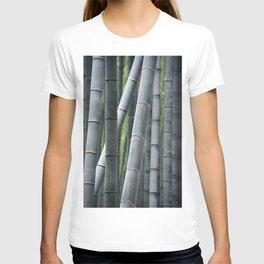 Bamboo Forest, Arashiyama Grove Sagano. Kyoto, Japan. Travel print - Photography wall art. Art print. T-shirt