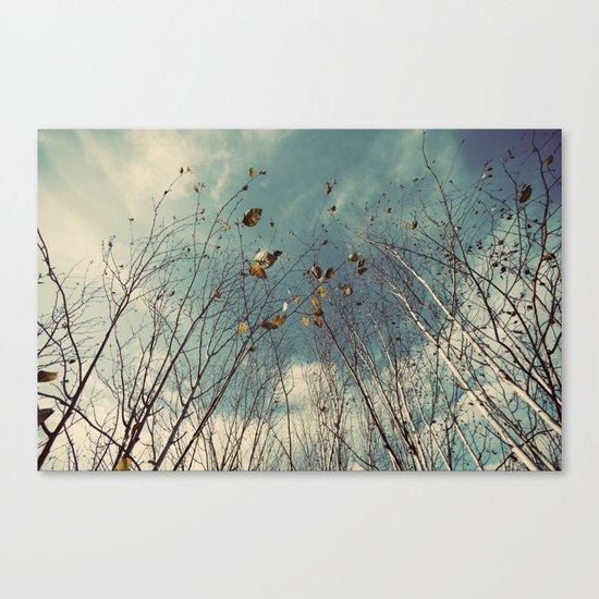Sereta Canvas Print