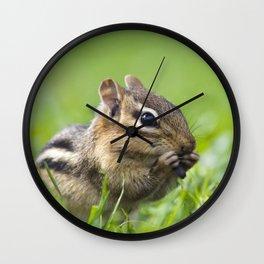 Cute Chipmunk Wall Clock
