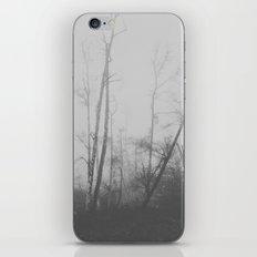 F O G G Y 2 iPhone & iPod Skin