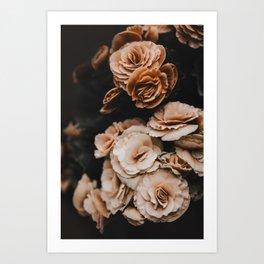 Begonia Flowers Art Print