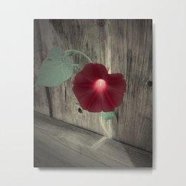 Flower | Flowers | Red Flower Metal Print