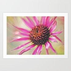 Macro Flower 01 Art Print
