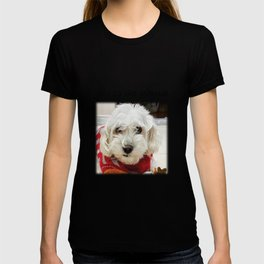 Cute Sweet Doggy_Joy to the World in Christmas T-shirt