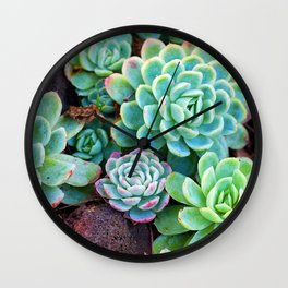 Green Succulents Wall Clock