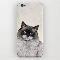 Mr. Ragdoll Cat iPhone & iPod Skin