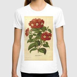 Flower lasiandra lepidota12 T-shirt